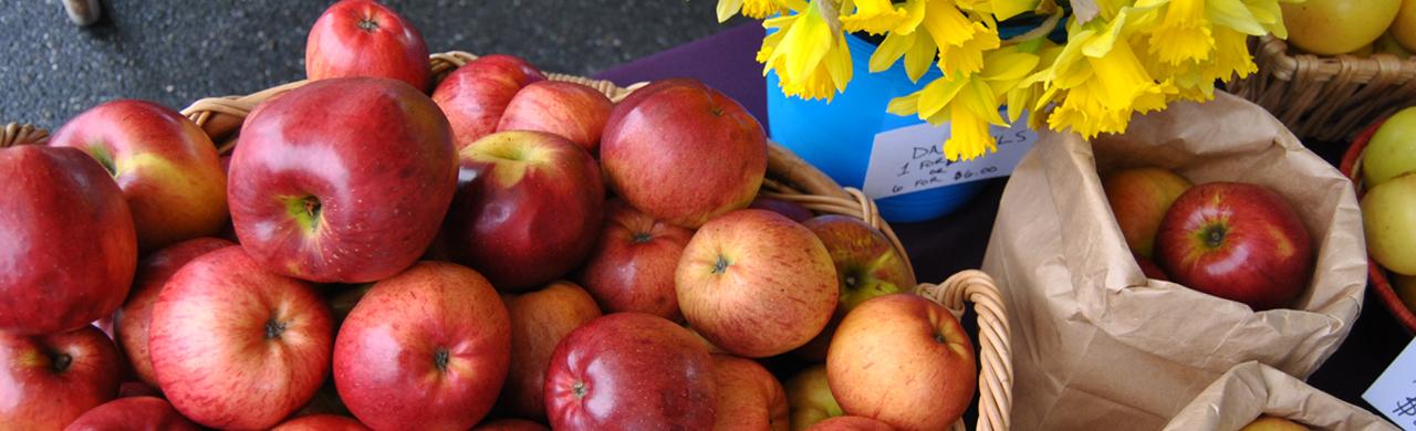 170401_bfm_vendor_apples