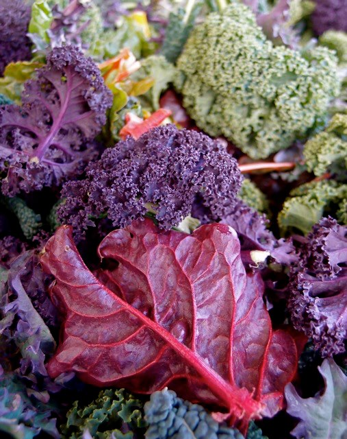 Kale purple and green